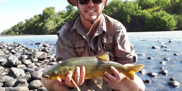 smallmouth_yellowfish_orange_river_south_africa